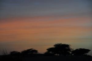 Just before getting dark and sleepy
