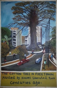 Conakry Cotton Tree