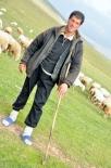 Herder met Gat in Broek