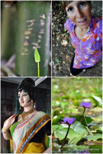 India maart-001