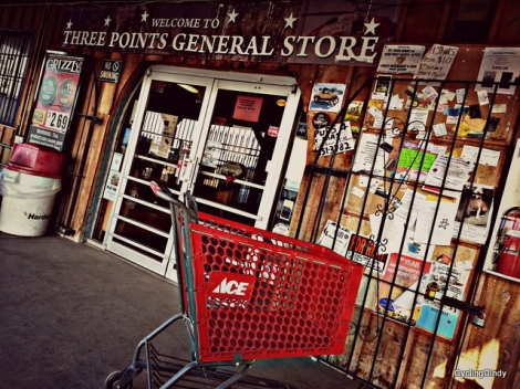 Shit Kicking Classic Country Store-001