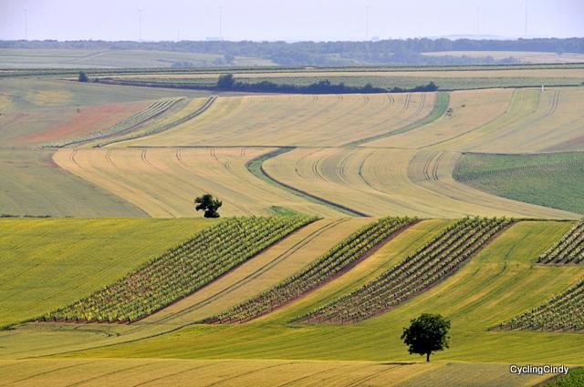 The neatness of an Austrian farmer