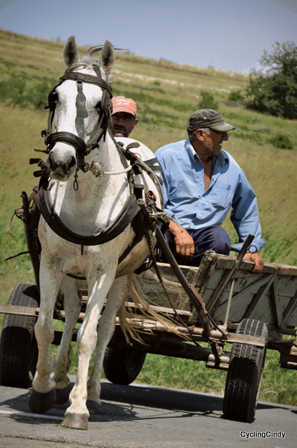 Horse working hard with an empty cart