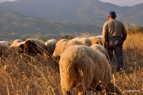 Another shepherd. He entered our camp when we thought to be stealthy...