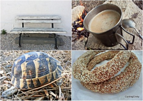 Beautiful bench again. Simit, delicious. And of course, the turtle!