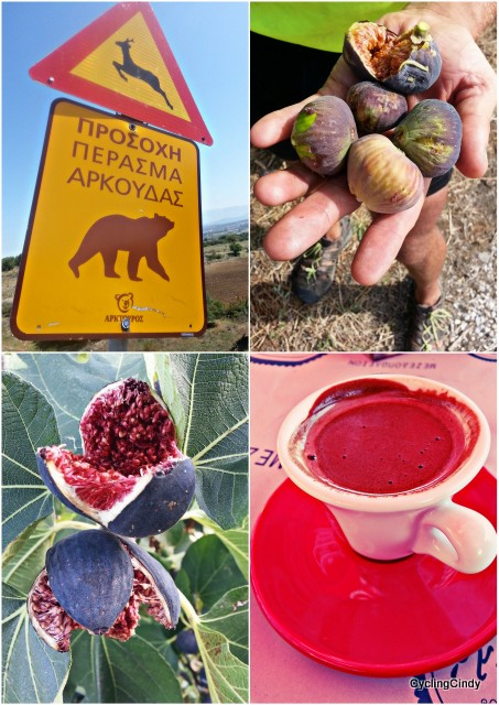 Strong coffee, figs for free and a remarkable sign!