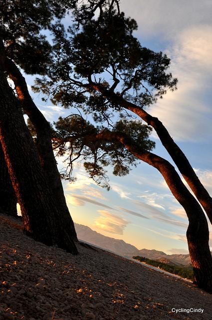 At the coast of Makarska