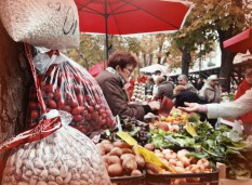 Farmers market on Pula
