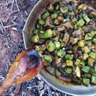 An okra kind of curry