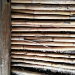 More reeds to built a roof